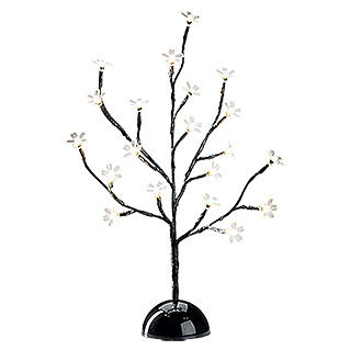 Tween Light Guirnalda decorativa LED (Para interior, 20 luces, Negro)