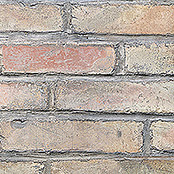 PB DEKOR THE WALL   305X124X1,85 cm