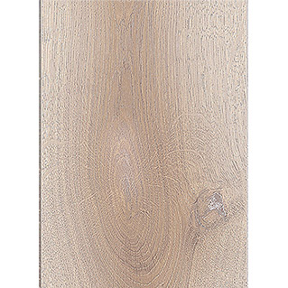 MyStyle Laminat MyDream (Frozen Oak, 2.400 mm x 234 mm x 10 mm)