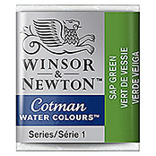 COTMAN H/PAN SAP    GREEN