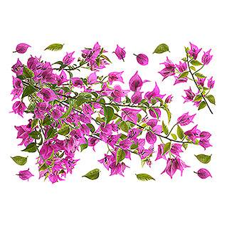 Vinilo de pared (Bougainvillea, 48 x 68 cm)