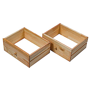 Regalux Schubladen-Set (17 x 42 x 33 mm, Nadelholz)