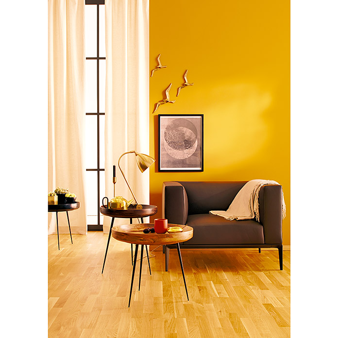 sch ner wohnen wand deckenfarbe trendfarbe limited collection india 2 5 l matt bauhaus. Black Bedroom Furniture Sets. Home Design Ideas