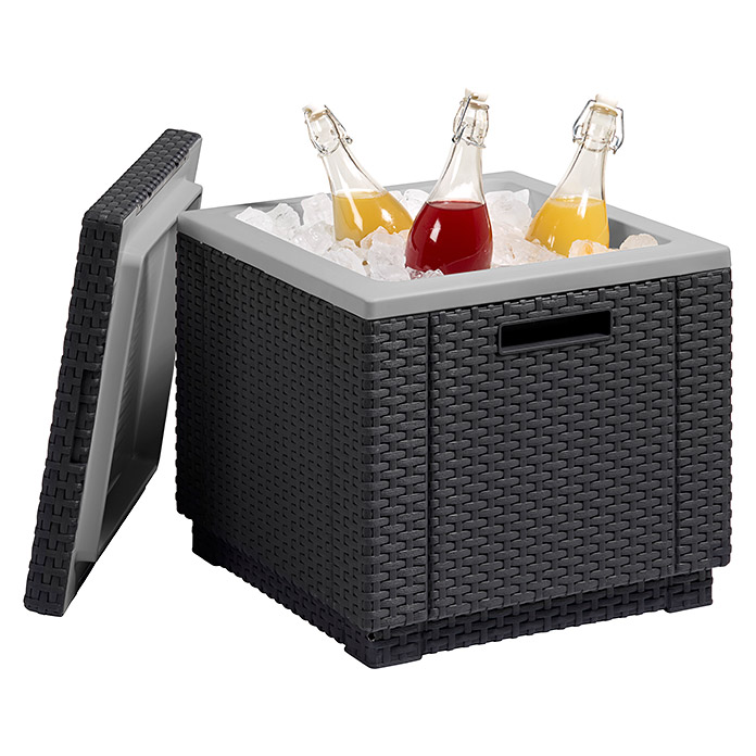 Allibert Kühlbox Ice Cube (42 x 42 x 38 cm, Anthrazit)