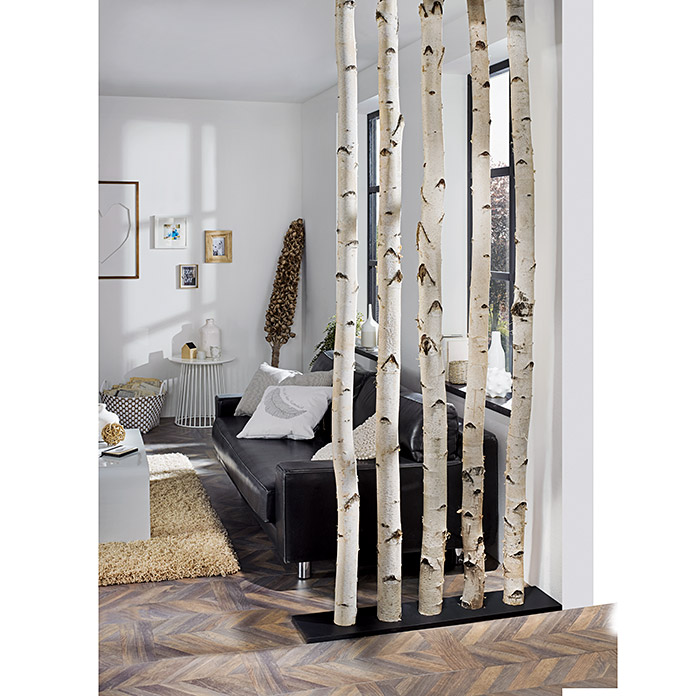 exclusivholz birkenstamm 0 8 m durchmesser ca 6 12. Black Bedroom Furniture Sets. Home Design Ideas