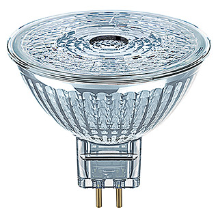 Osram Bombilla LED Star MR16 (4,6 W, 36°, No regulable, Blanco cálido)