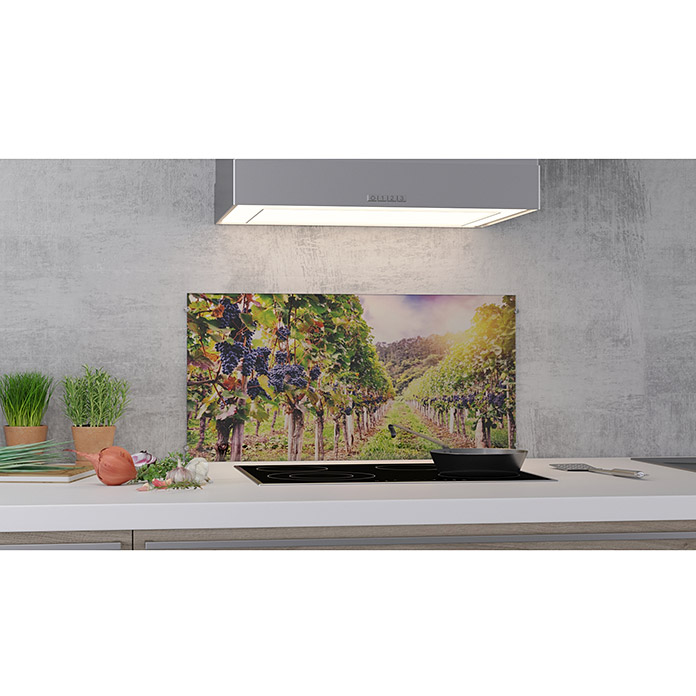 cucine k chenr ckwand vineyard 80 x 40 cm st rke 6 mm einscheibensicherheitsglas esg. Black Bedroom Furniture Sets. Home Design Ideas