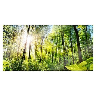GLASBOARD 80X40cm  Shining Forest