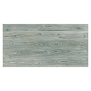 Opera Group Feinsteinzeugfliese Sherwood Grigio (30 x 60 cm, Grau, Glasiert)