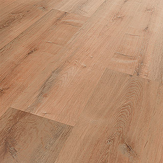 Star Clic Vinylboden More+ Golden Oak Honey (1.210 x 220 x 5 mm, Landhausdiele)