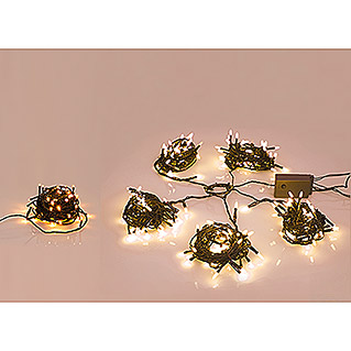 Light Creations LED-Lichterkette Novalight (Innen, 40-flammig, 6 m)