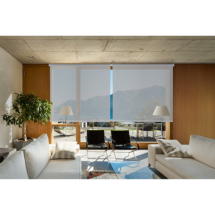 Viewtex Estor enrollable Screen 10% (An x Al: 180 x 250 cm, Blanco perla, Traslúcido)