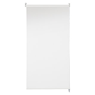 Bandalux Estor enrollable Decoscreen (105 x 190 cm, Blanco, Traslúcido)