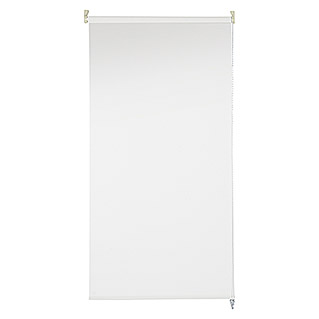 Bandalux Estor enrollable Decoscreen (180 x 190 cm, Blanco, Traslúcido)