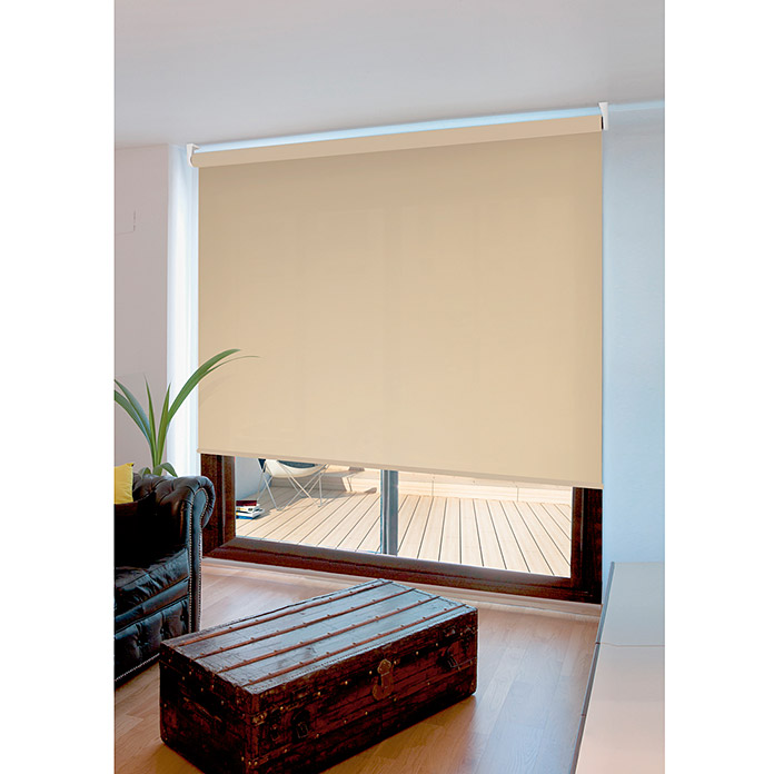 Viewtex Estor enrollable Ecofuture (An x Al: 150 x 190 cm, Marfil, Traslúcido)