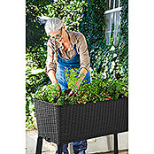 Huerto en alto Easy Growing (114 x 49,3 x 75,7 cm, PVC)