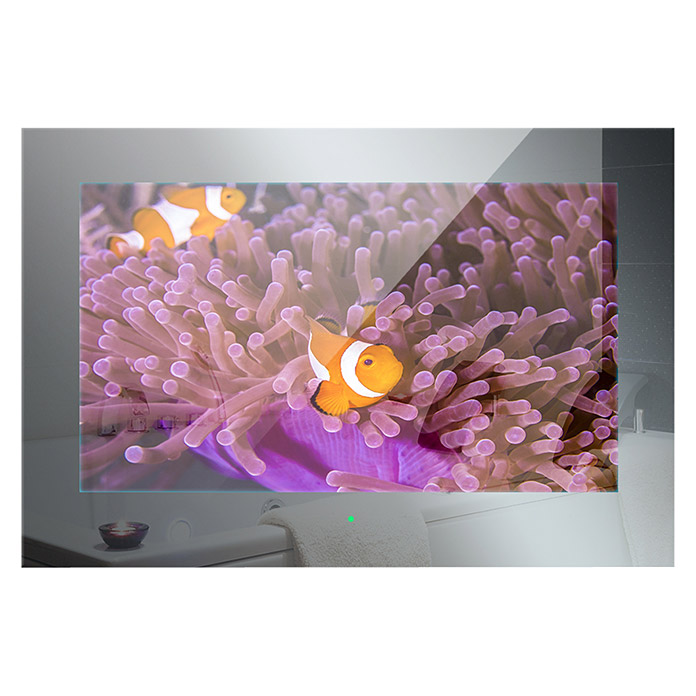 Mues-Tec Badezimmer-TV (Mit Glasfront, LED Display 18,5″/47 cm, 12 V DC) -