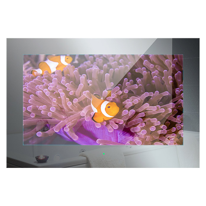 Badezimmer Tv.Mues Tec Badezimmer Tv Mit Glasfront Led Display 22 56 Cm 12 V