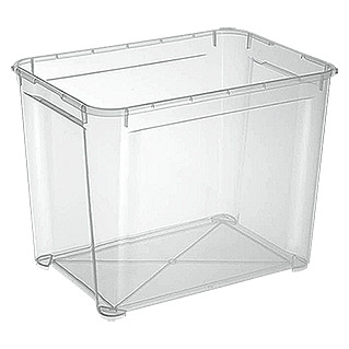 Regalux Clear Box XL (l x b x h: 54,8 x 38,4 x 42,2 cm, 70 l, Transparant)