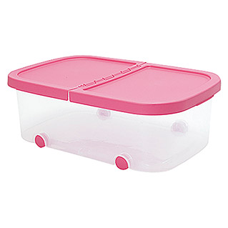 Plastiken Fresh Multibox (L x An x Al: 59 x 39 x 20 cm, Plástico, Color de tapa: Rosa)