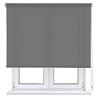 Viewtex Estor enrollable Screen 10% (An x Al: 200 x 250 cm, Gris perla, Traslúcido)