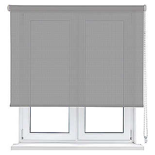 Viewtex Estor enrollable Screen 10% (An x Al: 150 x 250 cm, Blanco gris, Traslúcido)