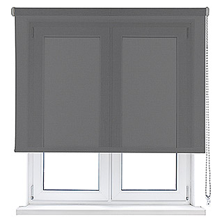 Viewtex Estor enrollable Screen 10% (An x Al: 90 x 250 cm, Gris, Traslúcido)