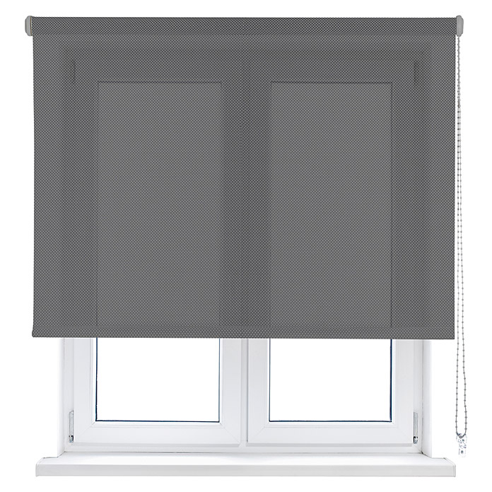 Viewtex Estor enrollable Screen 10% (An x Al: 150 x 250 cm, Gris, Traslúcido)