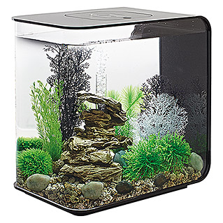 biOrb Aquarium FLOW (30 l, Schwarz, LED)