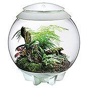biOrb Terrarium AIR (60 l, Weiß)