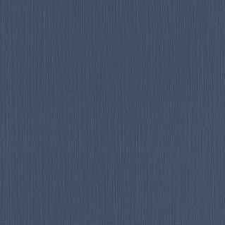 Barbara Home Collection Vliestapete (Blau, Uni, 10,05 x 0,53 m)