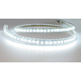 Alverlamp Tira LED a metros LT220 (12 W, Color de luz: Blanco neutro, Temperatura de color ajustable)