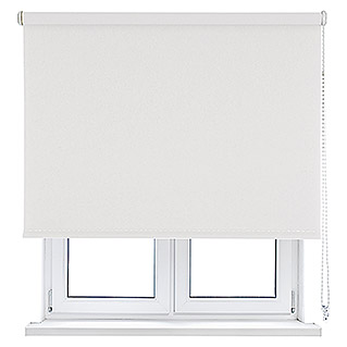 Viewtex Estor enrollable Black Out (An x Al: 150 x 250 cm, Blanco, Opaco)