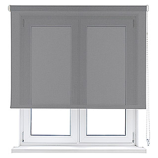 Viewtex Estor enrollable Screen 10% (An x Al: 165 x 190 cm, Gris perla, Traslúcido)