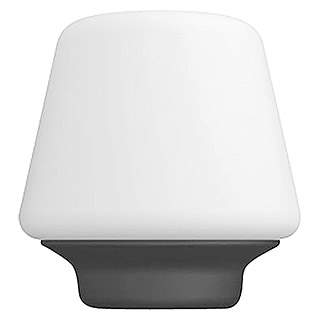 Philips Hue Led-tafellamp, rond Wellness (9,5 W, Wit, Ø x h: 18,6 x 19,3 cm)
