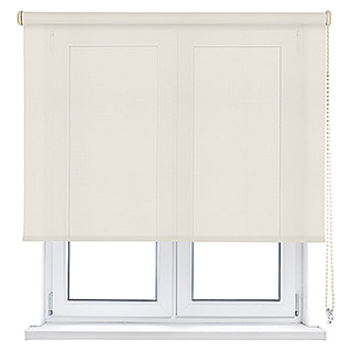 Viewtex Estor enrollable Screen 5% (An x Al: 120 x 250 cm, Beige/Blanco, Traslúcido)