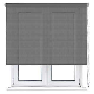 Viewtex Estor enrollable Screen 10% (An x Al: 150 x 190 cm, Gris, Traslúcido)
