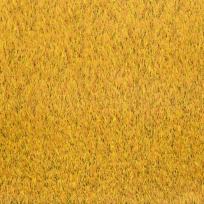 Classis Carpets  Infinity Grass Rasenteppich World of Colors (200 x 133 cm, Sunflower Gold, Ohne Noppen)