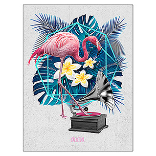ProArt Leinwandbild (Flamingo on Jukebox, B x H: 60 x 80 cm)