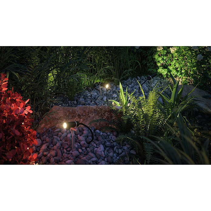 Paulmann Plug & Shine LED-Gartenspot-Set Plantini (1-flammig, 2,5 W, IP44 Schutzkontakt-Stecker, IP44)