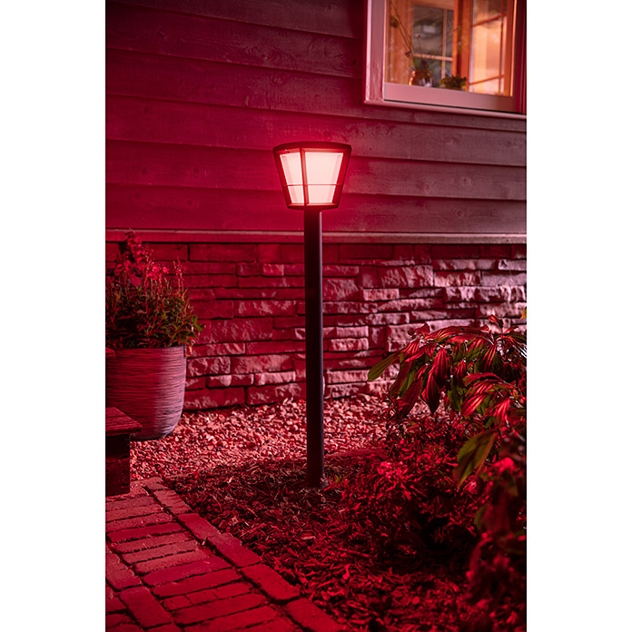Philips Hue LED-Außenwegleuchte White & Color Ambiance Econic (1-flammig, 15 W, Lichtfarbe: Bunt, IP44)
