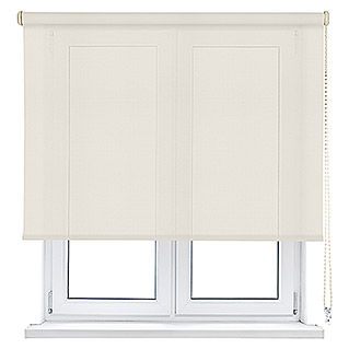 Viewtex Estor enrollable Screen 10% (An x Al: 135 x 190 cm, Beige/Blanco, Traslúcido)