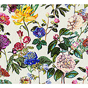 AS Creation Trendwall Vliestapete Blumenwiese (Bunt/Weiß, Floral, 10,05 x 0,53 m)