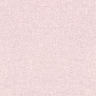 FREUNDIN HOME COLLECTION III Vliestapete (Rosa, Uni, 10,05 x 0,53 m)