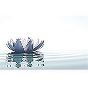 IR THERMOCOVER 60x100cm WHITE WATERLILY