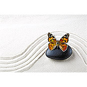 IR THERMOCOVER 60x60cm BUTTERFLY WAVE