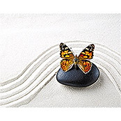 IR THERMOCOVER 60x80cm BUTTERFLY WAVE