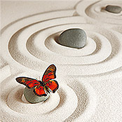 IR THERMOCOVER 60x60cm BUTTERFLY CIRCLES
