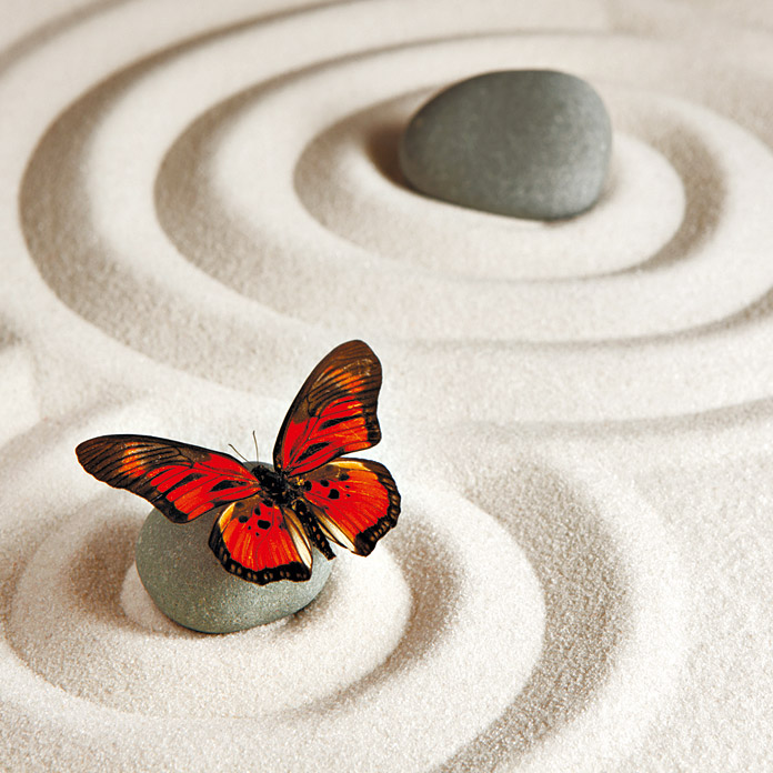 IR THERMOCOVER 60x100cm BUTTERFLY CIRCLES