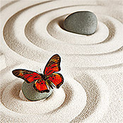 IR THERMOCOVER 60x140cm BUTTERFLY CIRCLES
